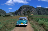 The car and the mogote