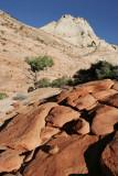 Rock formations at Checkerboard Mesa