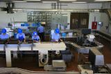 Ladies working at Mauna Loa Macadamia Nut Factory (remind anyone of a I Love Lucy episode???)