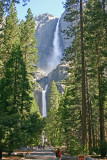 View of Yosemite Falls from the Lower Falls Trail