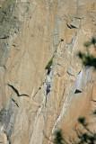 Another climbing team on El Capitan