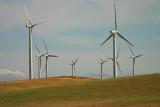 Windmills along the road towards Napa