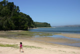 Tidal pools at Heart's Desire Beach