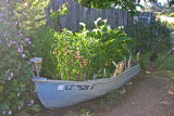 Can't find a flowerpot? Just use your boat.