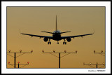 Aviation Sunsets