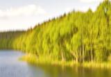 Trees Meet Water