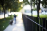 Fence @f1.4 5D
