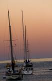 sail boats, catalina island, LA