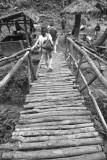 wooden bridge, Java