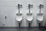 Trois Toilettes