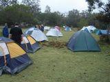The Camp Site (Janet Kleiner)