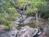 Little Crystal Creek (Lara Fine)