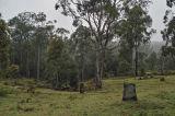 surroundings of camping area (Jaime Malo)