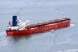 Navios Libra II