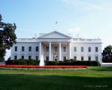 The White House ~ Washington D.C.