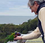 Peter, Feeding the Lorikeets