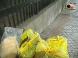Society's Trash