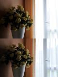 mesure matricielle capteur af sur bouquet  En haut D-lighting désactivé  en bas  D-lighting en mode high  le d-lighting a sous exposé de 1IL pour préserver les hautes lumières et remonté les basses lumières de la même valeur pour retrouver un bon équilibre