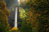 Oregon Autumn 2009
