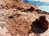 Sandstone concretions-  Mountain Sheep Canyon