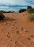 Exploring above Labyrinth Canyon - Our Footprints