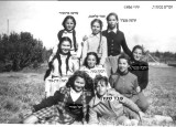 éìéãé 1936  áçáøåúà  69