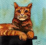 Charlie Cat, 4 x 4       11-08