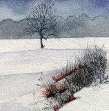 Tree in Snow, 4 x 4    11-09
