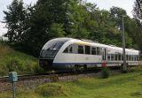 train in Bukowina