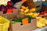 University Farmers Market Squash