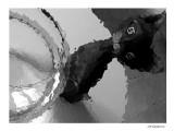 Le chat  et les souris / The cat and mouses