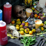 Tools of Trade from Mexican Healer at Zocalo, Mexico City