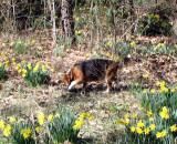 Spring 08 111.jpg