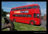 Zoo Bus, Black Country Museum