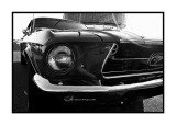 Ford Mustang, Antibes