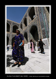 Along the great silk road 110