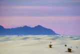 White Sands 32169