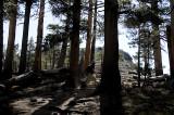 Hiking up Lembert Dome