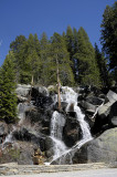 Friday, June 6 - A Waterfall along Tioga Road