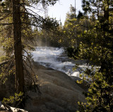 Saturday, June 7 - Miller's Cascades in the morning