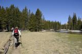 Hiking Along the Lyell Fork