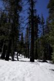Hiking on the hard Snow
