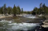 Back at the wide Lyell Fork