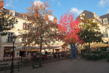 La place Plumereau