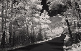 Long and winding road (IR)
