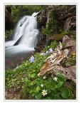 *Columbus Basin Falls*