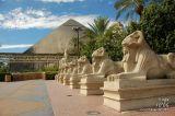Luxor 25495