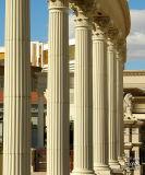 Caesar's Palace 25612