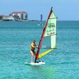 Jen Sailboarding