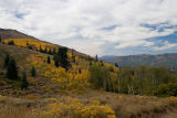 Nevada in the Fall